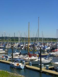 Across the harbor from the marina