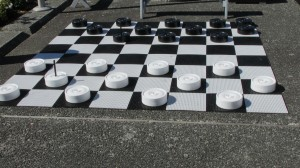A 'little' game of checkers?